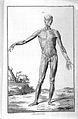 "D. Diderot and d'Alembert, ""Encyclopedie..."" Wellcome L0028243.jpg"
