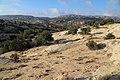 Dana Nature - panoramio (8).jpg