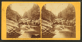 Deep Gorge, Black River, Cavendish, Vt, by Styles, A. F. (Adin French), 1832-1910.png