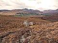 Deer fence crossing - geograph.org.uk - 1777378.jpg