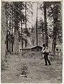 Deer hunter, ca 1911 (MOHAI 6357).jpg