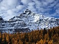 Deltaform Mountain above larch.jpg