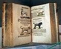 Deutsches Buch- und Schriftmuseum – Exponate 04.jpg