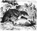 Die Gartenlaube (1865) b 188.jpg
