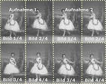 Aufteilung Einer Kollodium Nassplatte Fur Visitenkartenportrats Um 1860