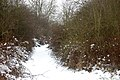 Dismantled railway trackbed in the snow (3) - geograph.org.uk - 1659781.jpg