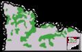 Distribució del pi negre al Pirineu català.png