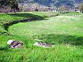 Dodona-Greece-April-2008-167.JPG