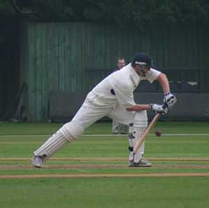 Dougie Brown - Brown batting for Warwickshire in 2006