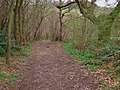 Down the bridleway - geograph.org.uk - 387664.jpg
