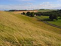 Downland between Ashbury and Lambourn - geograph.org.uk - 918576.jpg