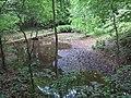 Dresdner Heide, mittlerer Fischmannsteich 2017.JPG