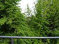 Dresdner Straße, Pirna 124423094.jpg
