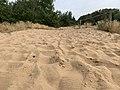Dunes Charmes Sermoyer 21.jpg