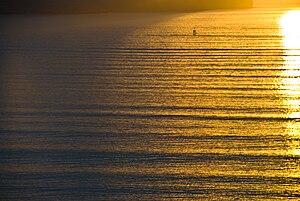 Swell (ocean) - Swell near Lyttelton Harbour, New Zealand