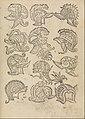 Ein frembdes und wunderbares kunstbüchlein MET DP280258.jpg