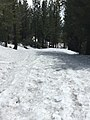 Eldorado National Forest - Social 42.jpg