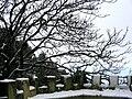 Erice - Balio sotto la neve.JPG