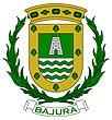 Escudo de Bajura, Cabo Rojo.jpg