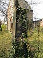 Evangelický hřbitov ve Strašnicích 74.jpg