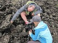 Exploring volcanic rocks of New Zealand.jpg