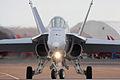 F18 Hornet - RIAT 2009 (3797517763).jpg