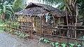 FARMER HOUSE IN VILLAGE NEAR DAET DEZEMBER 2012 - panoramio.jpg