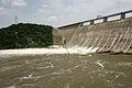 FEMA - 30910 - Lake Travis being lowered through floodgates in Texas.jpg
