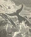 FMIB 43693 Whale Capsizing a Boat.jpeg