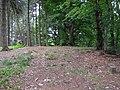 Falk Oberdorf Heidkopf Gipfel2.JPG