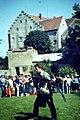 Falkenhof, Schloss Rosenburg - geo.hlipp.de - 25012.jpg