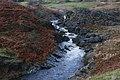 Falls on the Afon Claerwen - geograph.org.uk - 1596343.jpg