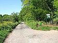 Farm road to Uncllys Farm, Wyre Forest - geograph.org.uk - 1317605.jpg