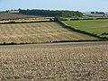 Farmland, Piddletrenthide - geograph.org.uk - 540241.jpg