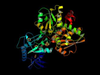 Hydrogenase - Image: Fe Fe Hydrogenase