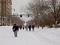 Feb 2013 blizzard 5877.JPG