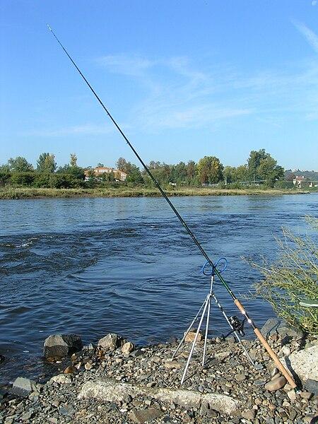 450px-Feeder_fishing.JPG