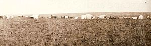 Ferreirasdorp - Ferreira's Camp in 1886