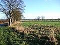 Field at Highmoor - geograph.org.uk - 304867.jpg