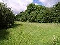 Field beside the West Lew - geograph.org.uk - 486938.jpg