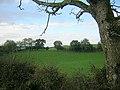 Field near Abune the Brae - geograph.org.uk - 263637.jpg