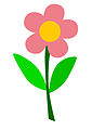 Fiore petali rosa.jpg