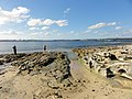 Fishing at Botany Bay - panoramio.jpg