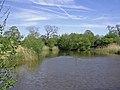 Fishing pool near Manley Old Hall - geograph.org.uk - 430925.jpg