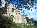 Flassans-ruines chateau.jpg