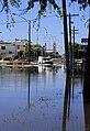 Flooded Firebrace Street looking towards the intersection of Hamilton Street.jpg