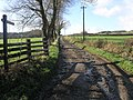 Flowing Footpath - geograph.org.uk - 310730.jpg