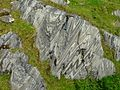 Folds in Lake Marble Formation in Ireland.jpg