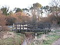 Footbridge, Canty Burn - geograph.org.uk - 327212.jpg