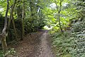 Footpath off Upton Road - geograph.org.uk - 531592.jpg